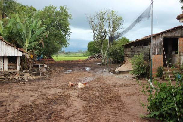 Local em Restinga Seca onde foram capturados os espécimes